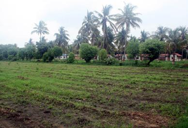 Biogas >> Sustainability >> Muni Seva Ashram
